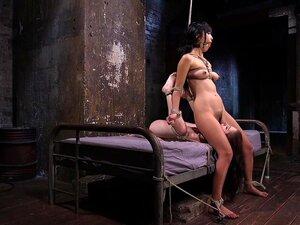 แอนนาเดอวิลล์ Marica Hase สันตะปาปา 2 โสเภณีในสภาพความเป็นทาส ทรมาน และทำการเลียหี - HogTied ใช้ทาสตำนาน ลามก และทำให้เธอกับมือใหม่ความเป็นทาส แอนนา DeVille และผูกไว้ด้วยกันทำให้ความสุขกัน ตามที่พวกเขากำลังถูก torme nted เสียงนี้เช่นพอ แต่เราดำเนินตลอดทั้