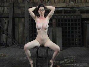 ทาส 2008 Sybil